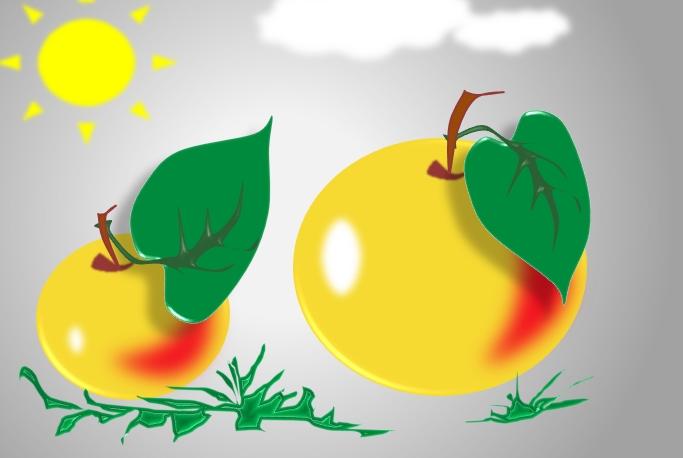 Рисунок Яблоки разной величины